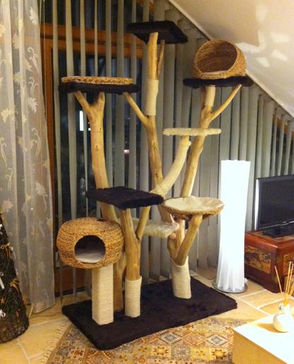 kratzbaum gewinnspiel gutschein im wert von 300 euro gewinnen katze du. Black Bedroom Furniture Sets. Home Design Ideas